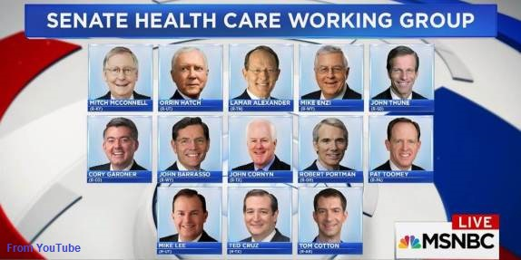Senate Healthcare Group