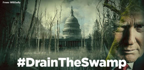 Trump drain the swamp