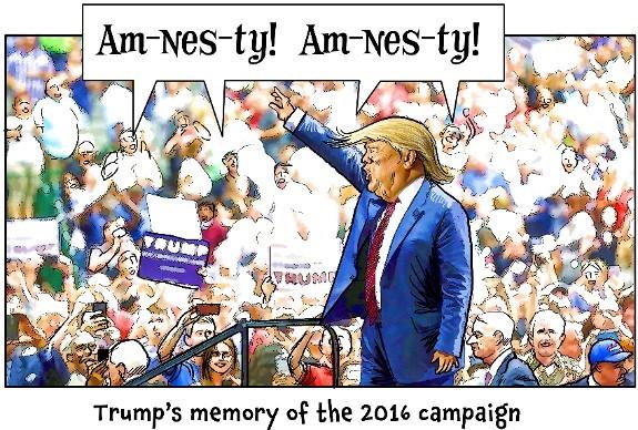 Trump amnesty