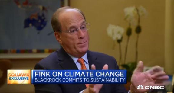 Larry Fink Climate Change
