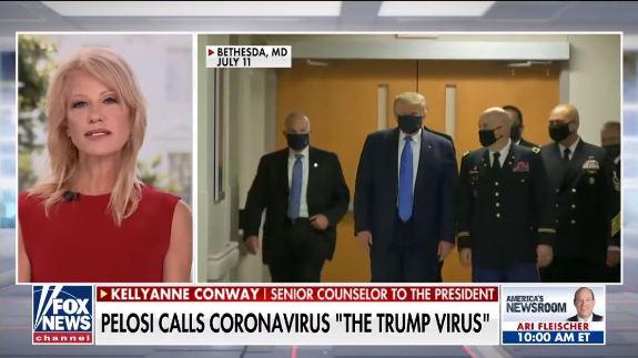 K Conway Pelosi Trump Virus