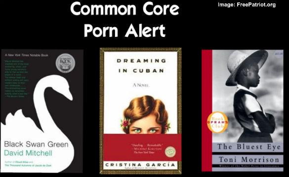 Common Core Porn Alert