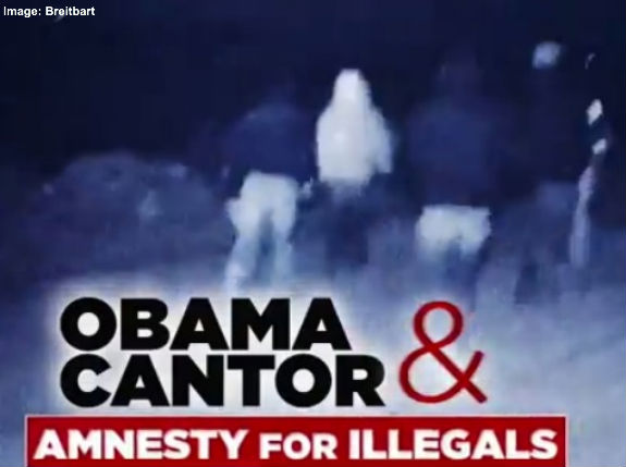 Obama Cantor Amnesty