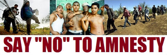 say no to amnesty